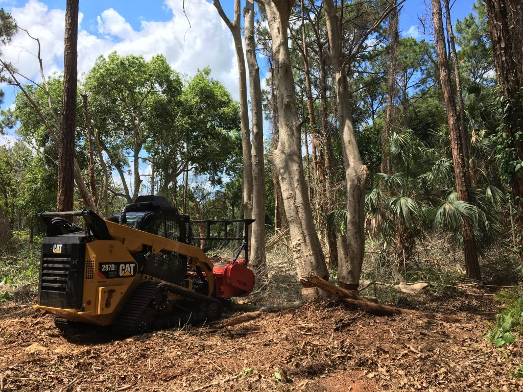 Land clearing option in Naples, Florida- forestry mulching by Signature Tree Care