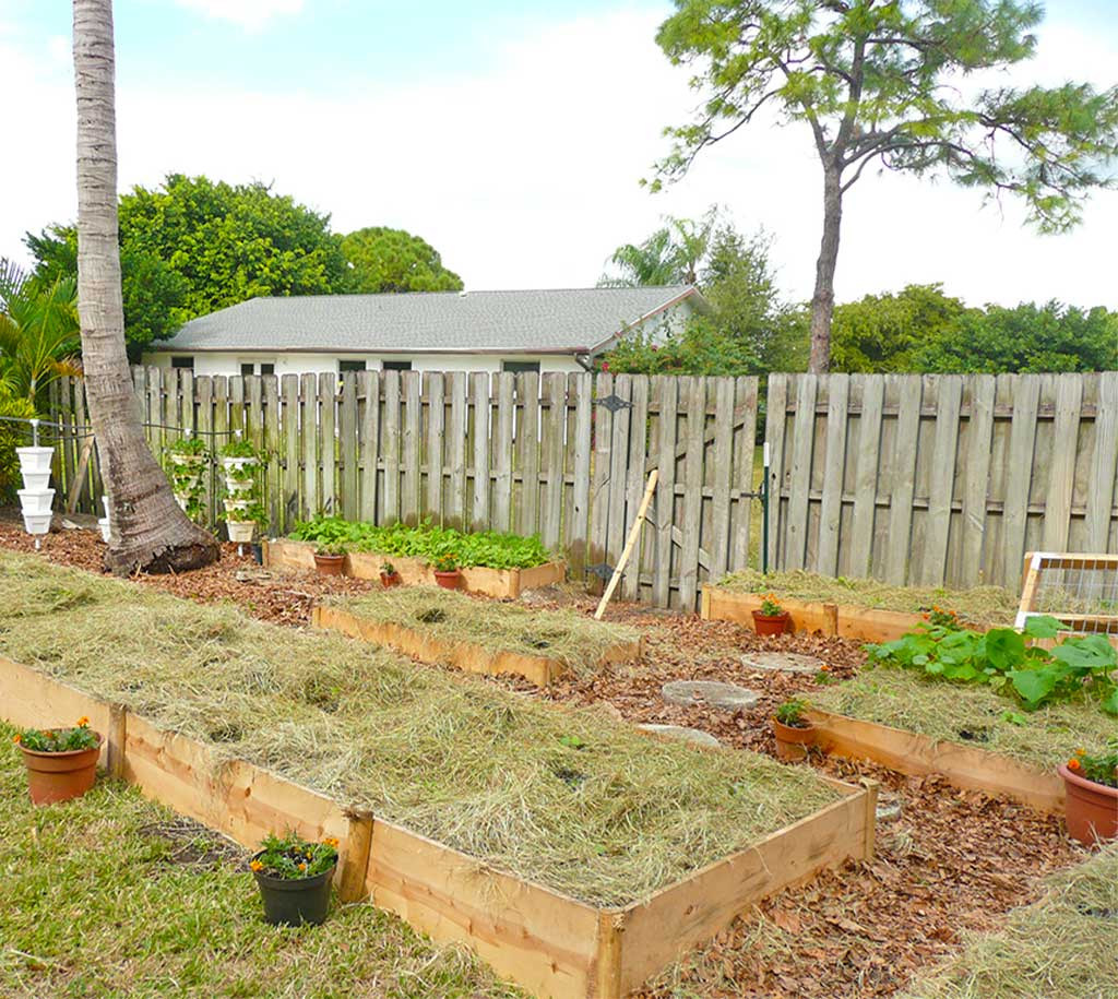 Backyard Vegetable Garden Greenhouse Installations by Signature Tree Care in Naples, FL
