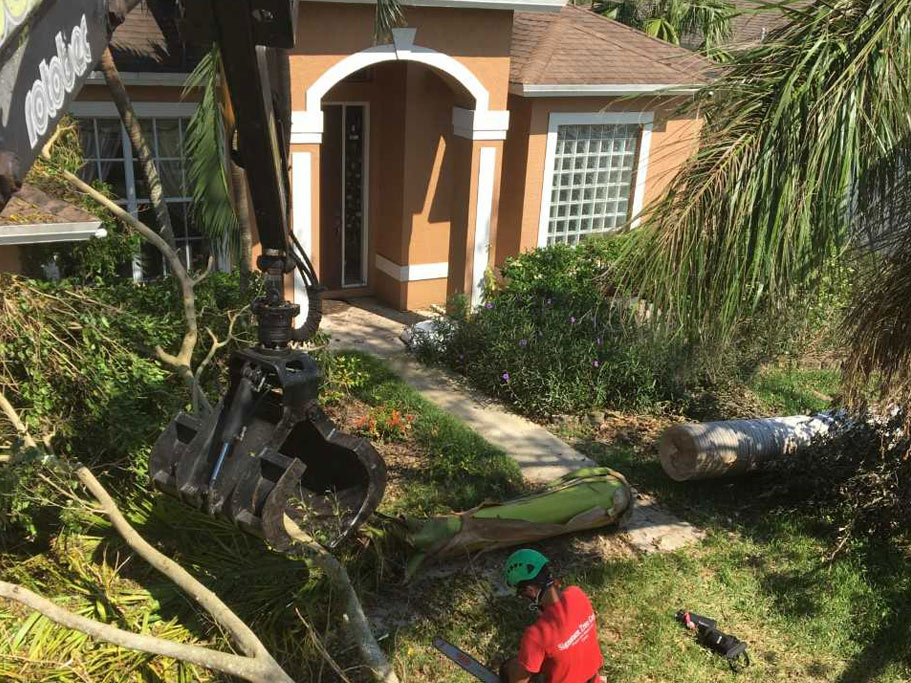Emergency Tree Service Company in Naples, FL. is ready for Hurricane Dorian | Signature Tree Care