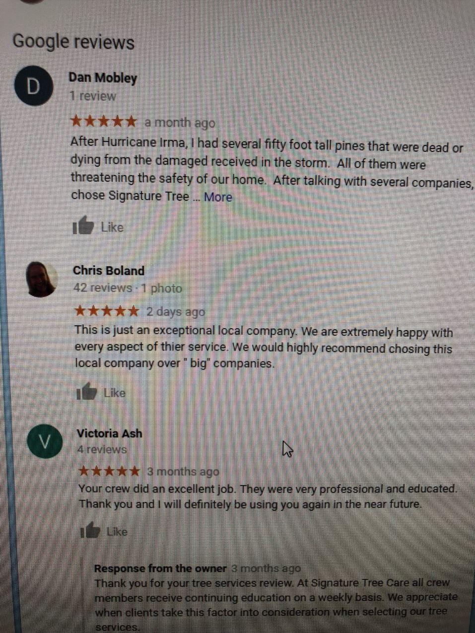Google Reviews Screenshot | Signature Tree Care in Naples, FL