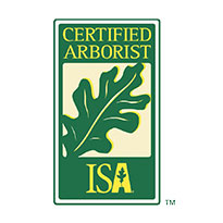 ISA Certified Arborist | Signature Tree Care in Naples and Ft. Myers, FL