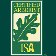 Naples Tree Service with ISA Certified Arborist | Signature Tree Care