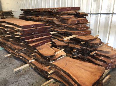 live edge wood signature tree care
