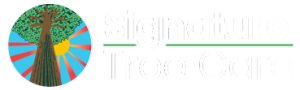 Residential & Commercial Tree Care Company in Naples, FL | Signature Tree Care