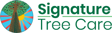Signature Tree Care